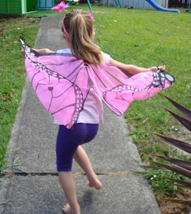 Butterfly Wings pink image 1