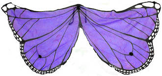 Butterfly Wings purple